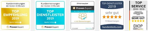 Deutsches Institut für Qualitätsstandards und -prüfung Logo für Top Service