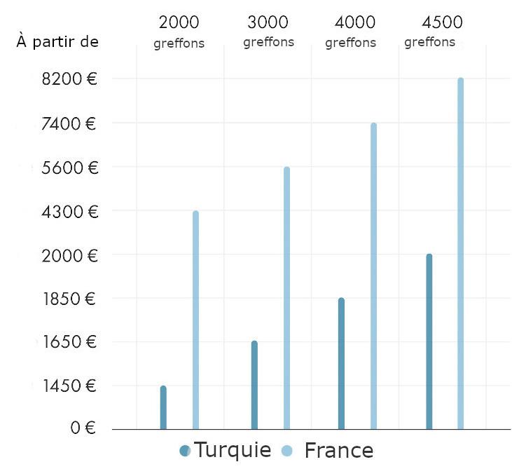 graphique montrant les différence de prix entre la France et Turquie pour une greffe de cheveux