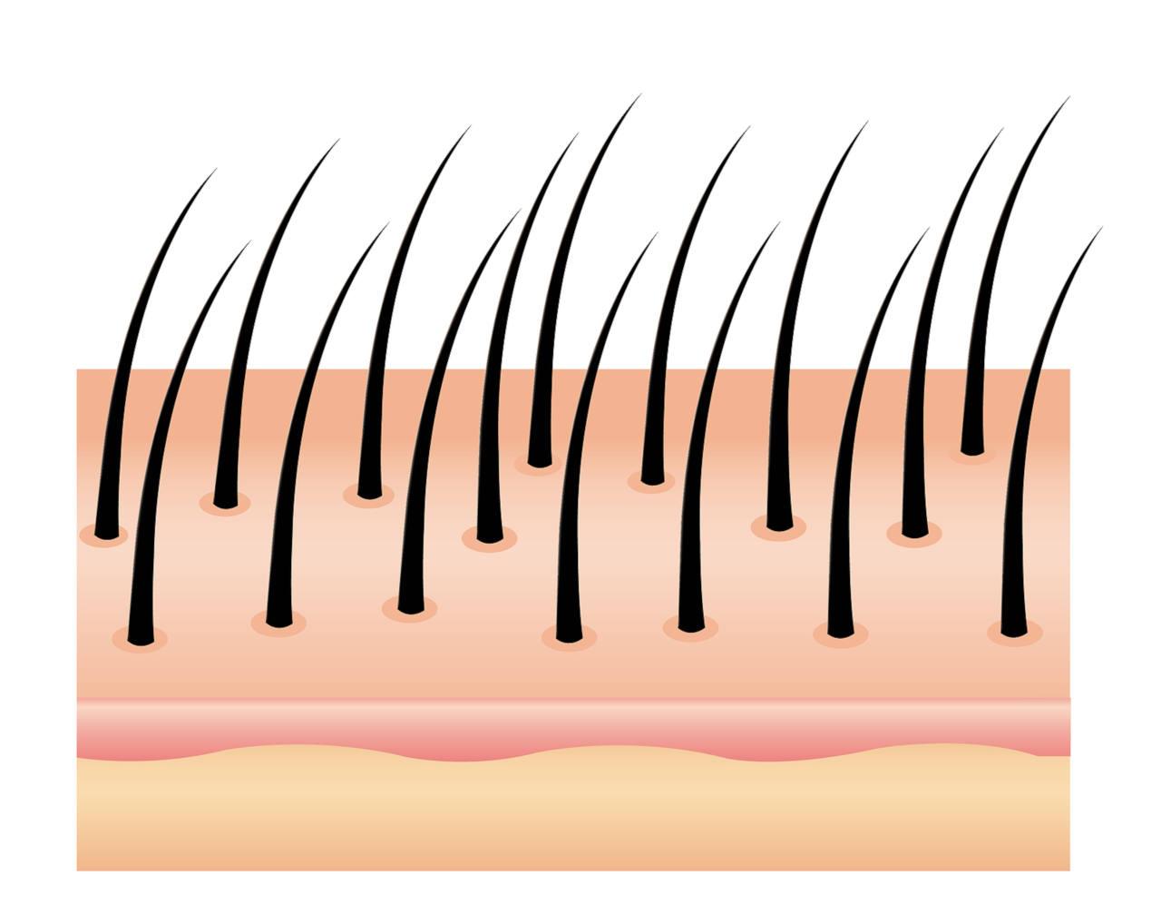 découvrez les bienfaits du vinaigre de cidre pour vos cheveux