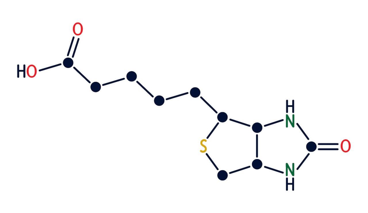 composition chimique de la biotine dont les carence provoquent la perte de cheveux