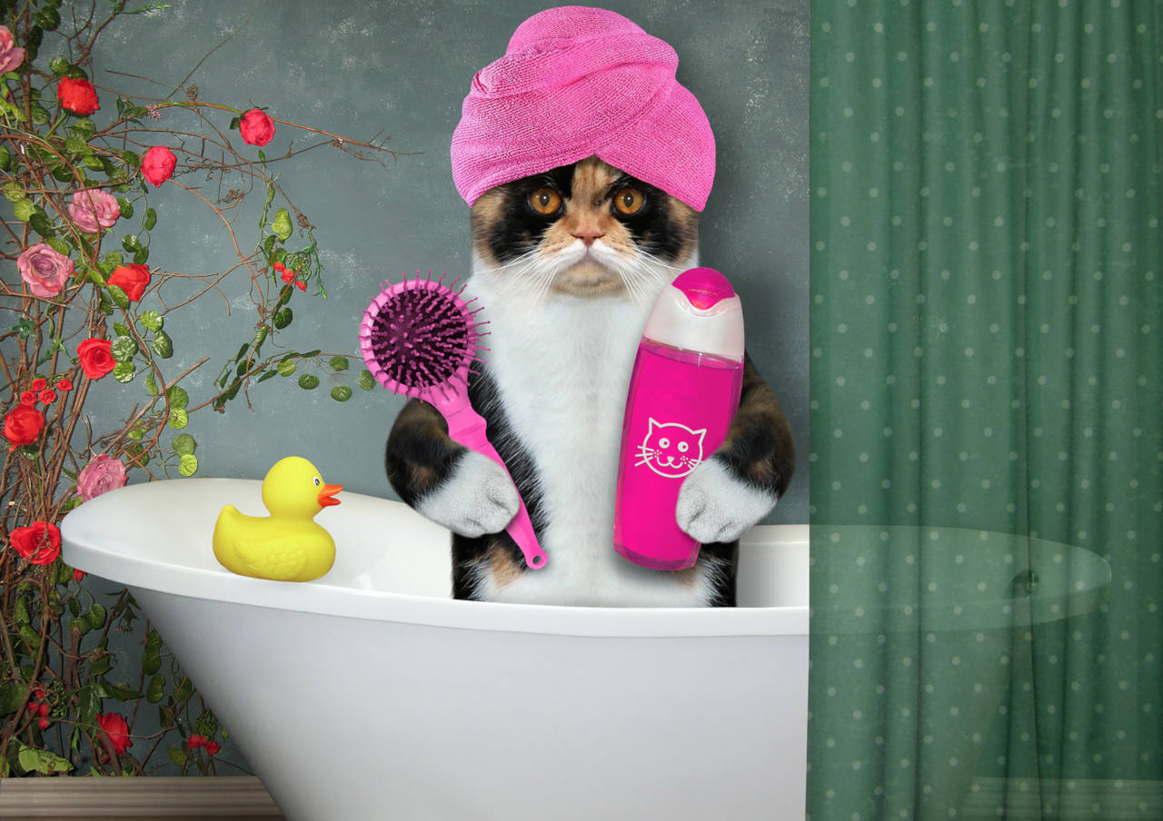 quelle est l'efficacité des shampoings anti-pelliculaires