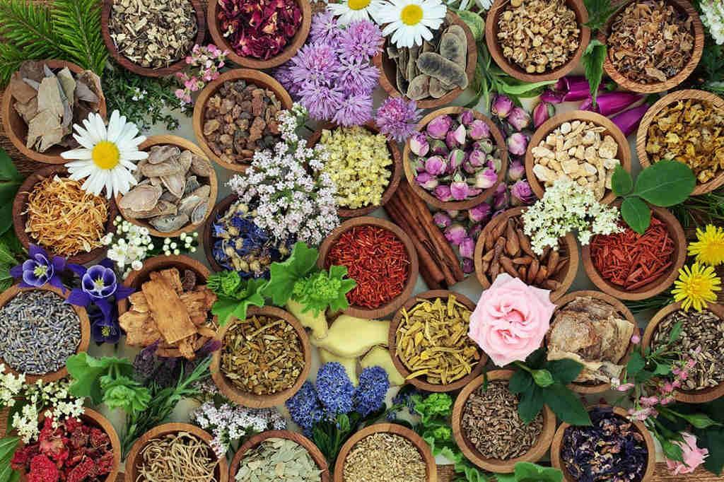 Viele verschiedene natürliche Produkte gegen Haarausfall