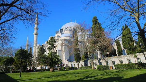Haarausfall Behandlung Türkei