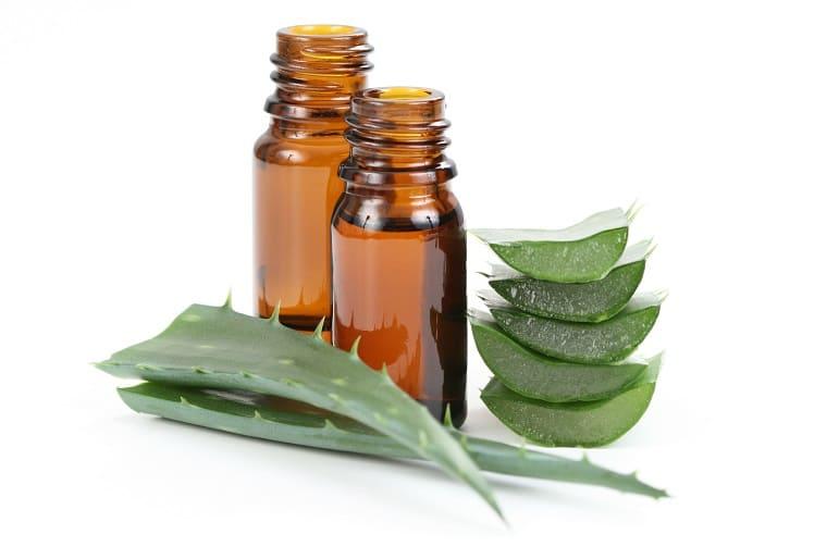Zwei Flachen Aloe Vera Öl mit Blättern davor