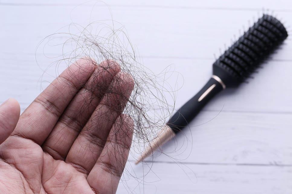 Frau hält neben einer Bürste einen ausgefallenen Büschel Haare in der aufgrund von Trichorrhexis nodosa