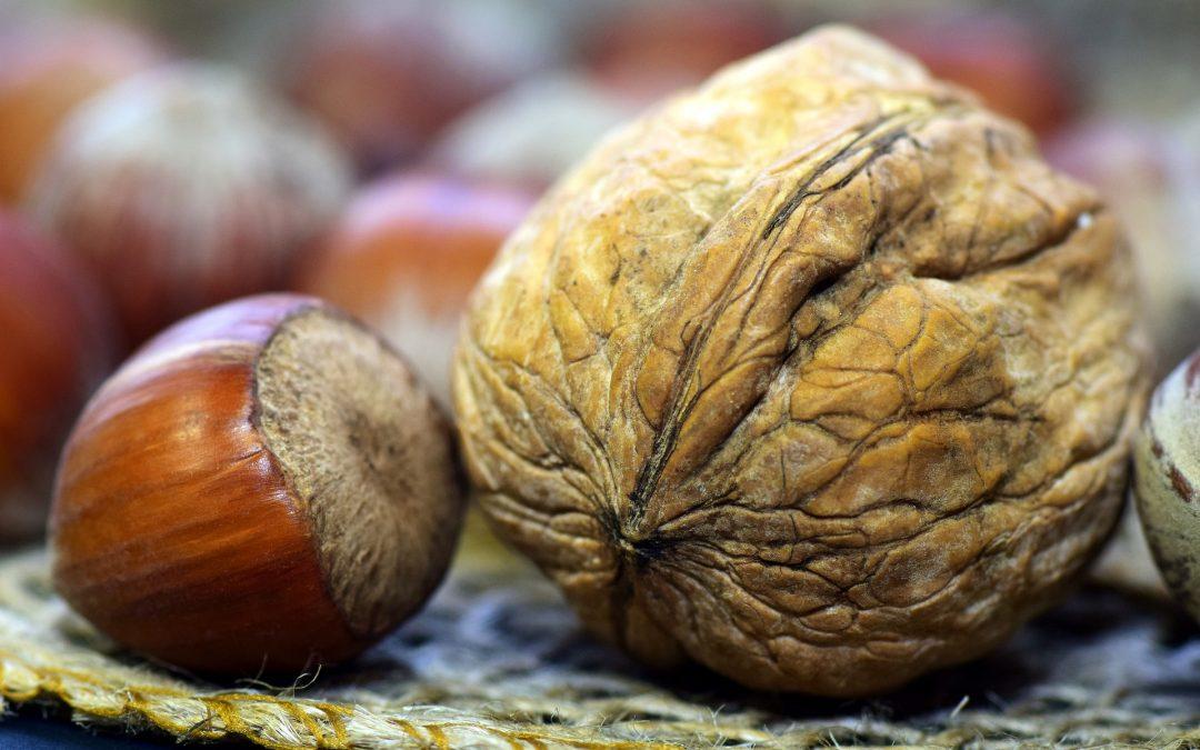 Noci: un ottimo alimento contro la caduta dei capelli