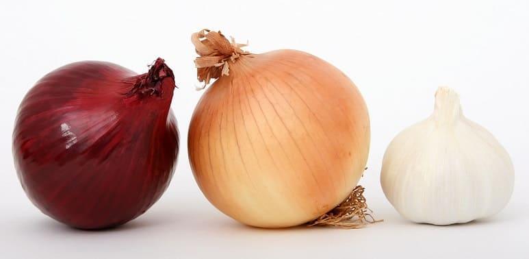 le cipolle sono un rimedio infallibile contro la calvizie