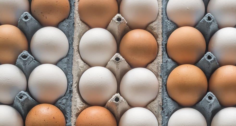 Huevos: ingrediente de la mayonesa